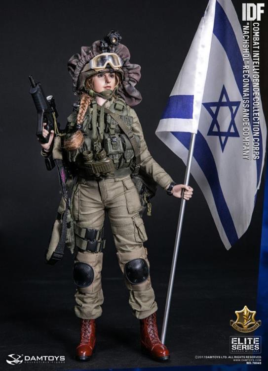 IDF COMBAT INTELLIGENCE IDF CAR-15 Carbine Rifle Set 1//6 Dam Toys