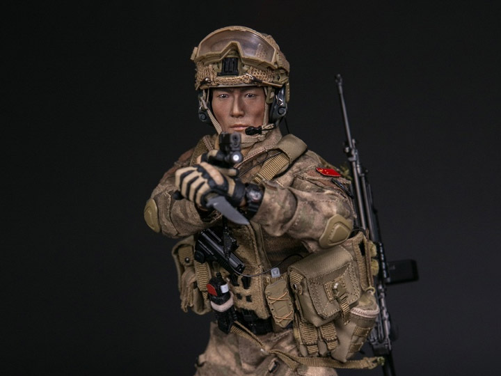 1//6 Scale Damtoys Action Figures Operation Red Sea Gunner Plate Carrier Vest