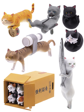 Kitten Arsenal Box of 6 Accessories