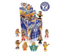 WWE Mystery Minis Figure - Random Single