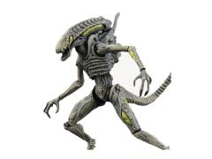 Aliens: Colonial Marines - 1:18 Scale Alien Boiler Action Figure