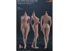 Super-Flexible Female Seamless 1/6 Scale Suntan Large Bust Body (S12D)