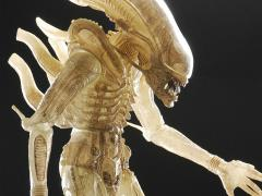 Alien (Translucent Prototype Suit Concept) 1/4 Scale Figure