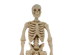 Vitruvian H.A.C.K.S. Skeleton Blank (White)