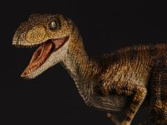 """Velociraptor mongoliensis """"Winston"""" 1/18 Scale Replica"""