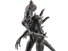 Aliens: Colonial Marines Xenomorph Raven 1:18 Scale Action Figure