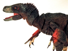 Beasts of the Mesozoic: Raptor Series Deluxe Figure - Atrociraptor marshalli