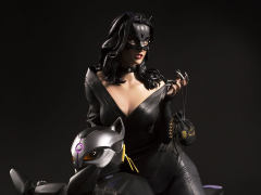 DC Premium Collectibles Catwoman Statue