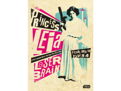 Star Wars Legends Princess Leia Displate Metal Print