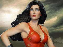 DC Comics Super Powers Collection Donna Troy Maquette