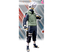 Naruto Shippuden Viz Collection Kakashi