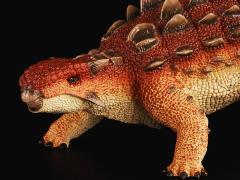 "Ankylosaurus ""War Pig"" (Plain) 1/35 Scale Replica"