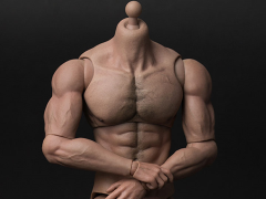 1/6 Scale Durable Body (Ripped)