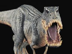 "Tyrannosaurus Rex ""Vanilla Ice"" (Mountain) 1/35 Scale Replica"