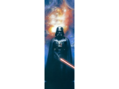 Star Wars Master of the Force: Release Your Anger Canvas Art Print