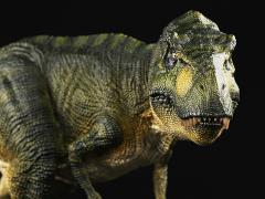 "Tyrannosaurus Rex ""Killer Queen"" (Jungle) 1/35 Scale Replica"
