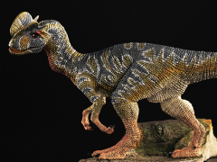 "Dilophosaurus wetherilli ""Green Day"" 1/35 Scale Replica"
