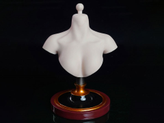 Cosplay Series 1/6 Scale Female Bust Stand (Pale)