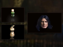 Harry Potter and the Half-Blood Prince Severus Snape (2.0) 1/6 Accessory Set