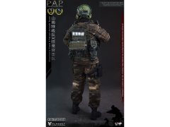Gloved Hands 1//6 Scale FLAGSET Action Figures PAP Shannante X Falcon