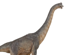 Brachiosaurus Figure