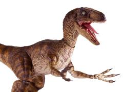 Jurassic Park Velociraptor 1/6 Scale Figure