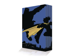 DC Comics Dark Knight Returns Collectors Edition Box Set