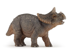 Young Triceratops Figure