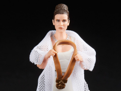 Star Wars: The Vintage Collection Princess Leia Organa (Yavin)