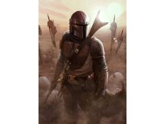 Star Wars The Calm After Limited Edition Lithograph