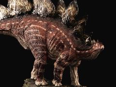 "Stegosaurus armatus ""Garden"" (Mountain Variant) 1/35 Scale Museum Class Replica"