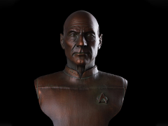 Star Trek Captain Jean-Luc Picard 1/2 Scale Limited Edition Bust