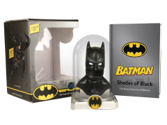 Batman Deluxe Cowl & Illustrations Book Kit