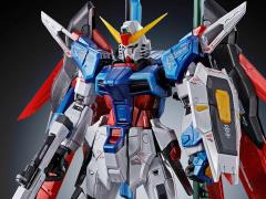 Gundam RG 1/144 Destiny Gundam (Titanium Finish) Exclusive Model Kit