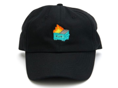 Lil Dumpster Fire Dad Hat