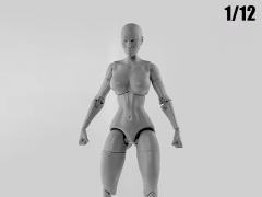 Jane Doe (Gray) Superheroine 1/12 Scale BBTS Exclusive Athletic Body