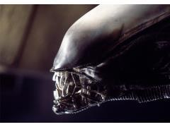 Alien Xenomorph Limited Edition Framed Art Print