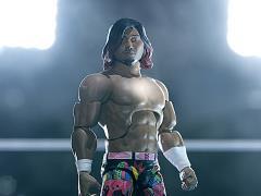 New Japan Pro-Wrestling Ultimates Hiromu Takahashi