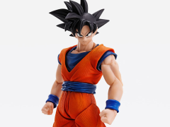 Dragon Ball Z Imagination Works Goku Figure