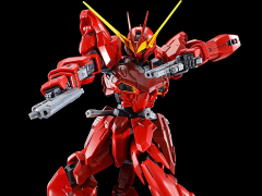 Gundam MG 1/100 Testament Gundam Exclusive Model Kit