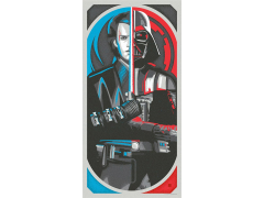 Star Wars Balance in the Force Limited Edition Lithograph