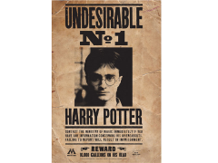 Harry Potter Undesireable Tin Sign